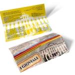 gioviali-brochure1000x750.jpg