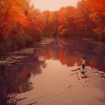 """Sfondo """"Autunno sul lago"""" - 2560x1536 px"""